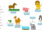 Names of animals | Recurso educativo 11705